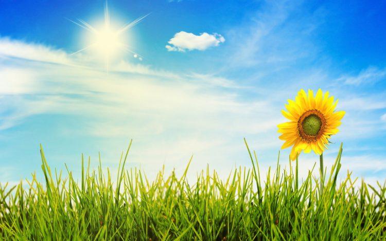 792797-ushte-denes-sonchevo-i-toplo-vreme-od-utre-spremajte-chadori